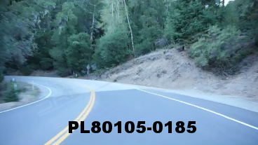 Vimeo clip HD & 4k Driving Plates Redwood Forest, CA PL80105-0185