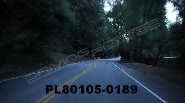 Vimeo clip HD & 4k Driving Plates Redwood Forest, CA PL80105-0189
