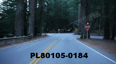Vimeo clip HD & 4k Driving Plates Redwood Forest, CA PL80105-0184