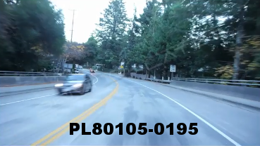 Vimeo clip HD & 4k Driving Plates Redwood Forest, CA PL80105-0195