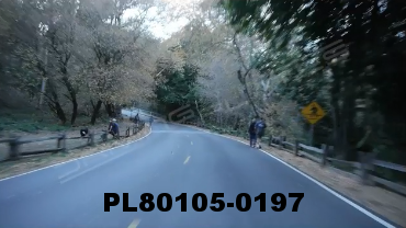 Vimeo clip HD & 4k Driving Plates Redwood Forest, CA PL80105-0197