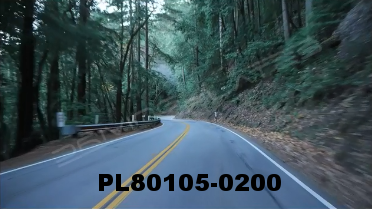 Vimeo clip HD & 4k Driving Plates Redwood Forest, CA PL80105-0200