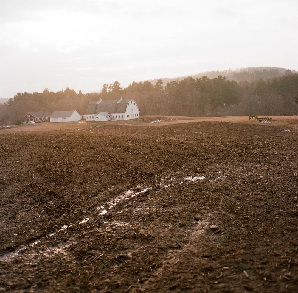 farm-31.jpg