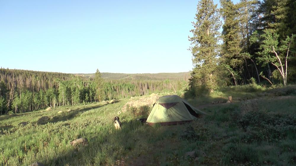 Camping spot near Lower Piney Lake trailhead