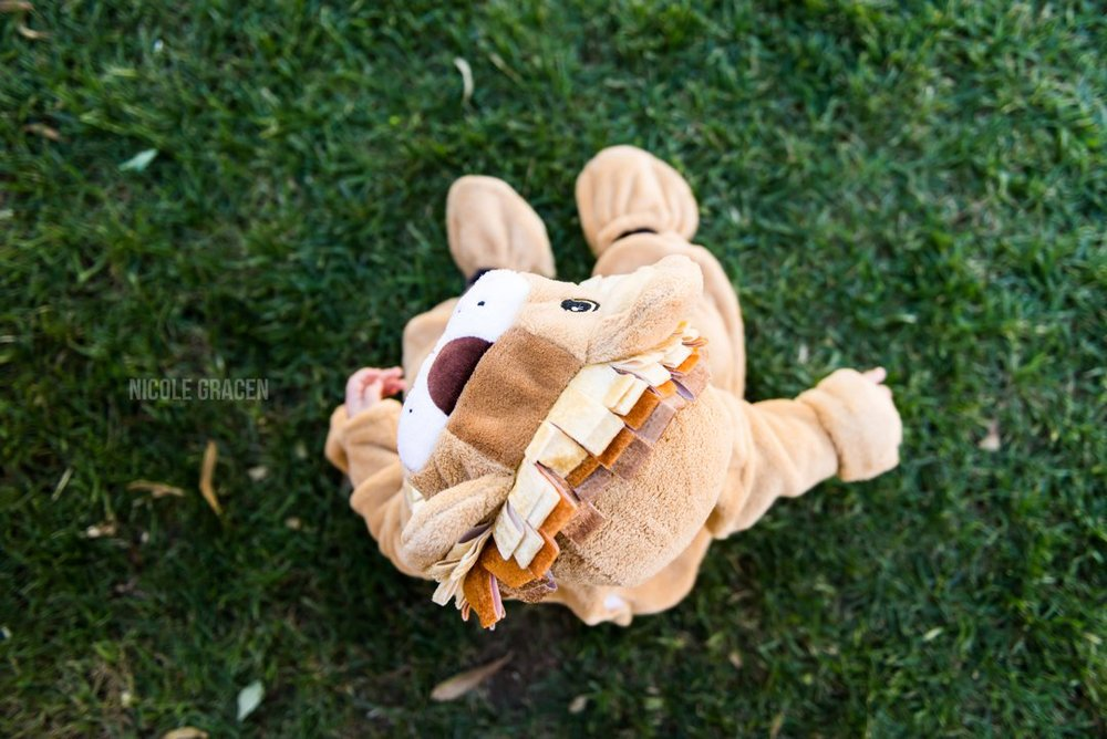 Lion costume idea for babies