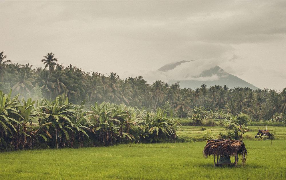 Jasri, Indonesia, 2017