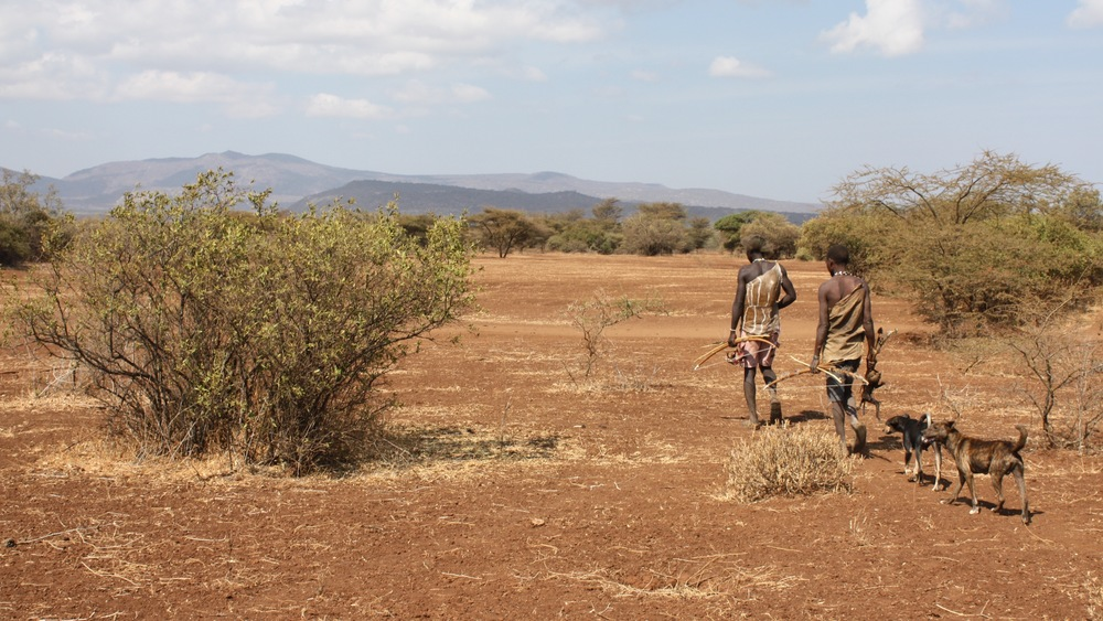 Pedestrians: Hadazbe tribespeople, returning from a hunt. Image: Wikimedia