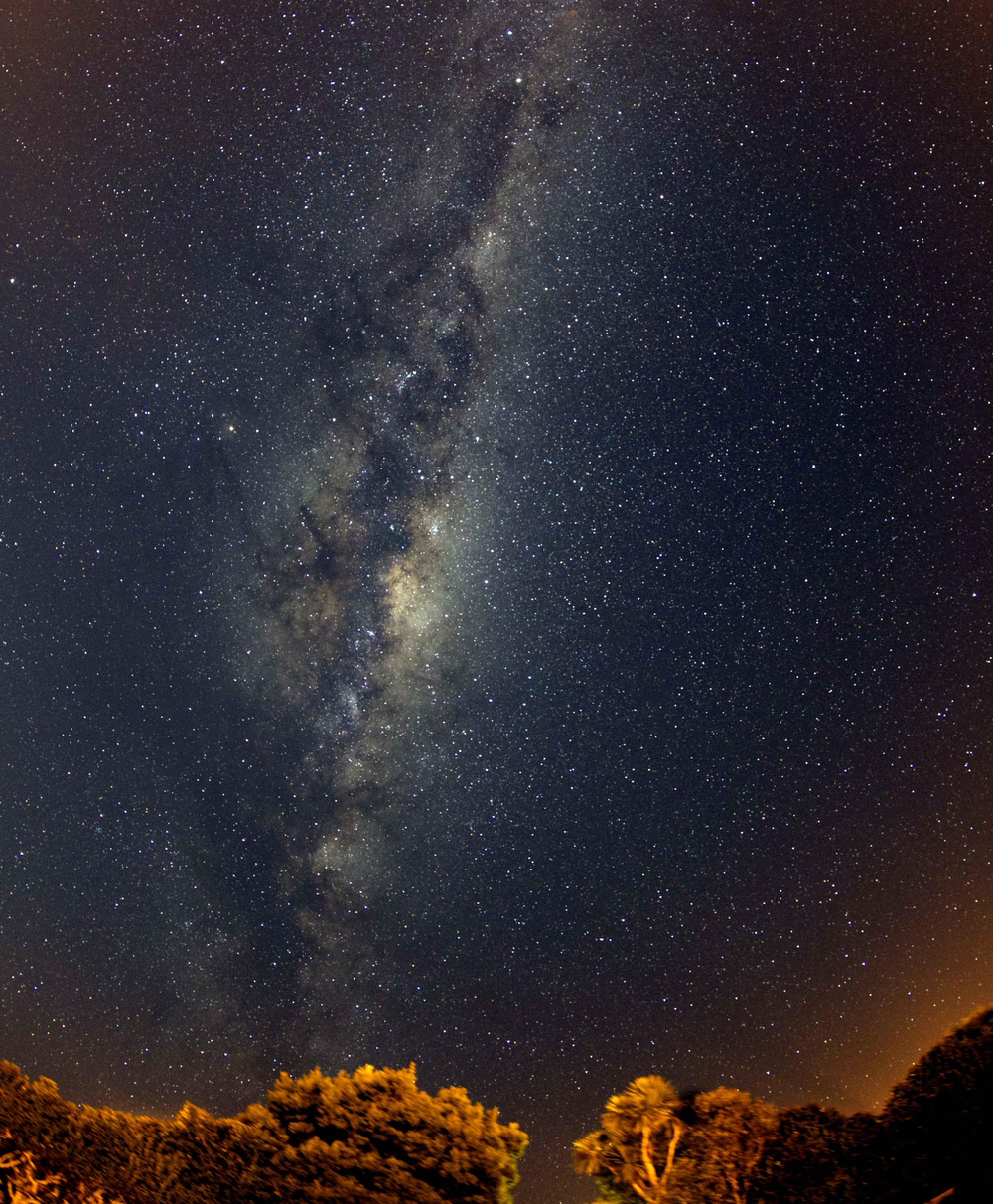 The Milky Way over Portobello, Dunedin. Image: Ian Griffin.