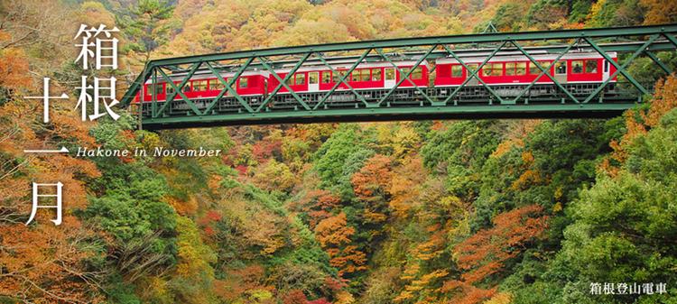 Här Japans enda bergsklättrande tåg med en stigning på ca 450 meter under 40 minuter. I Hakone, som nu på hösten är så här vackert.  Bild: Odakyu Electric Railway