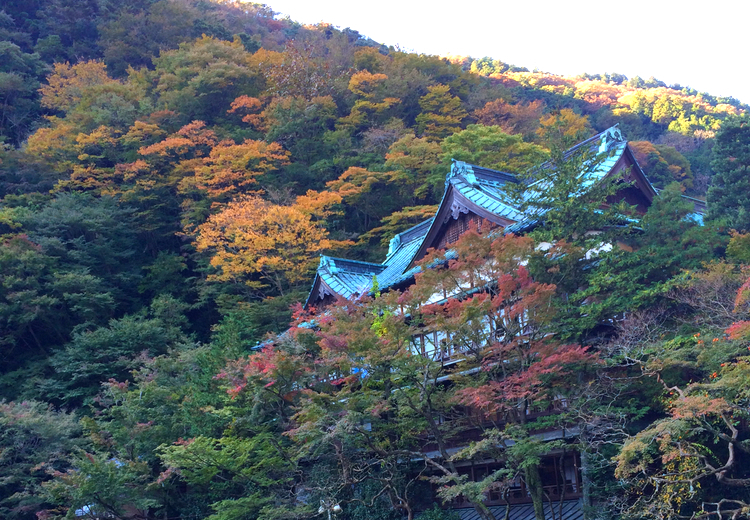 Kansuiro ligger vackert inbäddad i bergsgrönskan i Hakone, bara ca kilometern från tågstationen Hakone Yumoto.