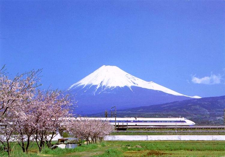 Kan ett vykortsmotiv bli mer japanskt? Fuji-san, Shinkansen och körsbärsblommor!  Foto: WIkimedia Commons