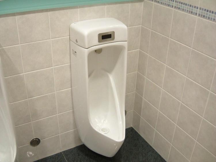 En typisk modern japansk urinoar. Tacksamt nog något man sällan behöver leta länge efter.