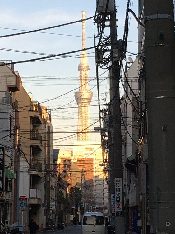 Utsikten mot Sky Tree skyms av Tokyos kabeldragning i luften.