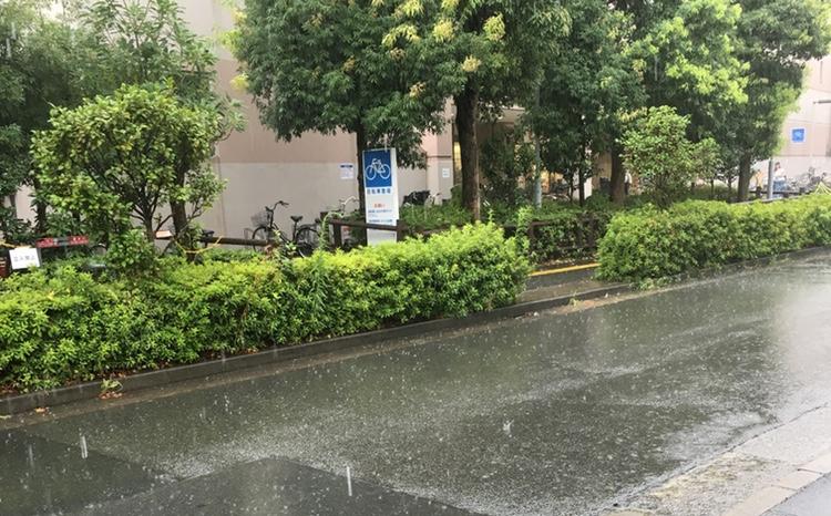 Mycket regn och lite starkare vindar än vanligt - värre än så drabbades inte Tokyo av årets 12:e tyfon. Utsikt från vårt lokala yakitori-hak.