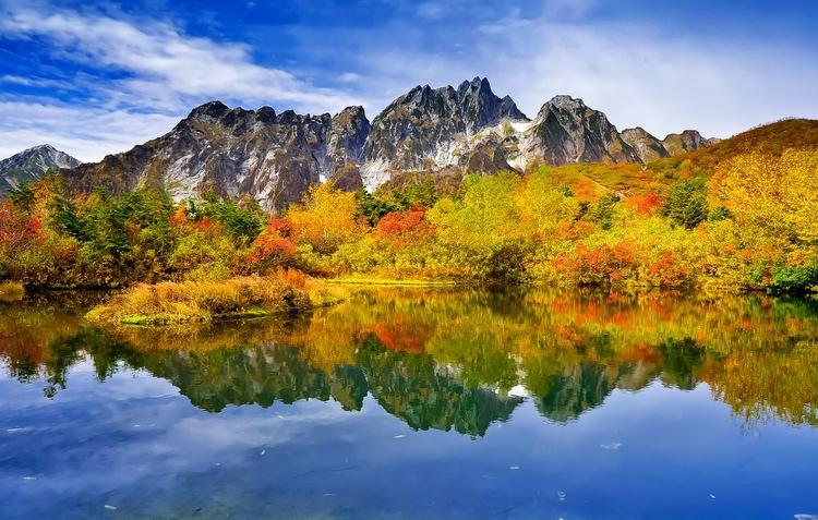 Hösten visar upp all sin prakt tack vare de många olika träslagen som ändrar färg i olika takt.  Foto: Public Domain