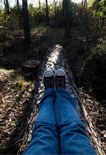 sitting-on-a-log