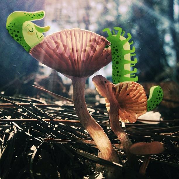 JessBlank_Caterpillar.jpg