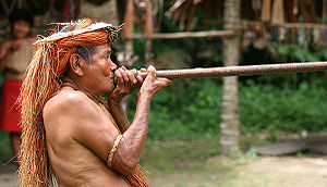 300px-Yahua_Blowgun_Amazon_Iquitos_Peru.jpg