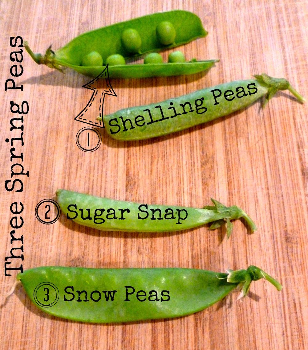 3 peas.jpg