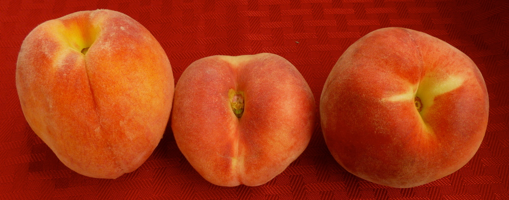 Yellow, Saturn, White Peaches