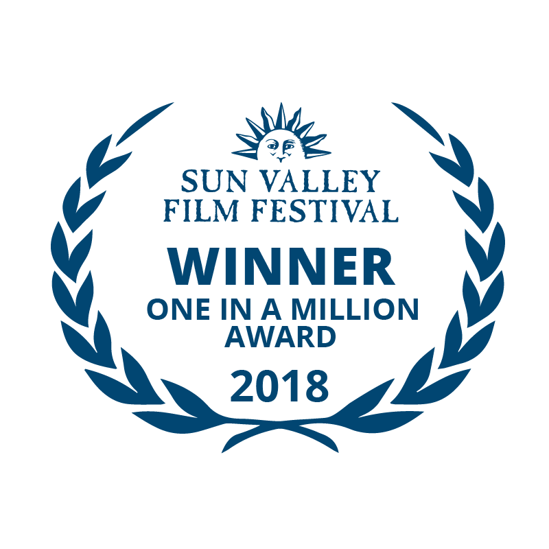 2018 SVFF million-01.png