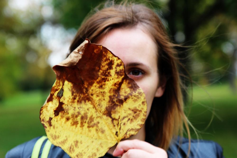 leaf series2.jpg