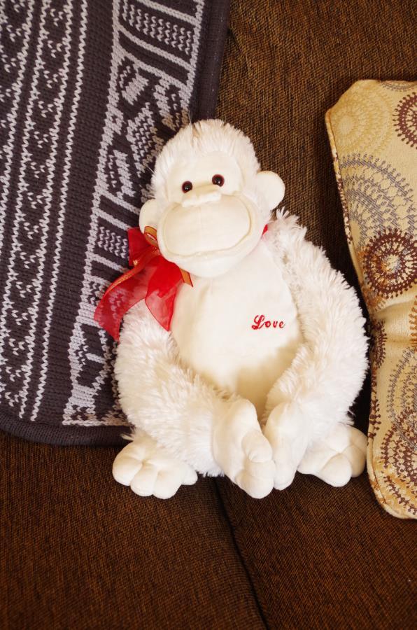"""Monkey love"" cookie recipe"