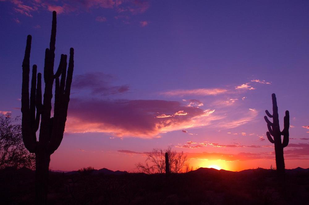 Arizona Sunset Photo from Gene Hanson -http://www.genehanson.com/sunsets/sunset.htm
