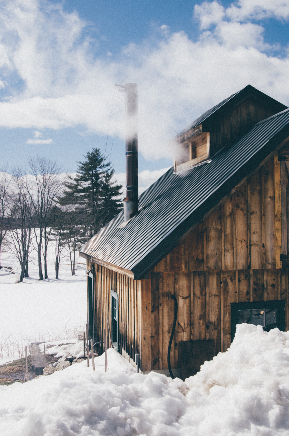 1a76affacf2 March in New England is maple sugaring season. Sugarhouses all over the  region begin collecting sap