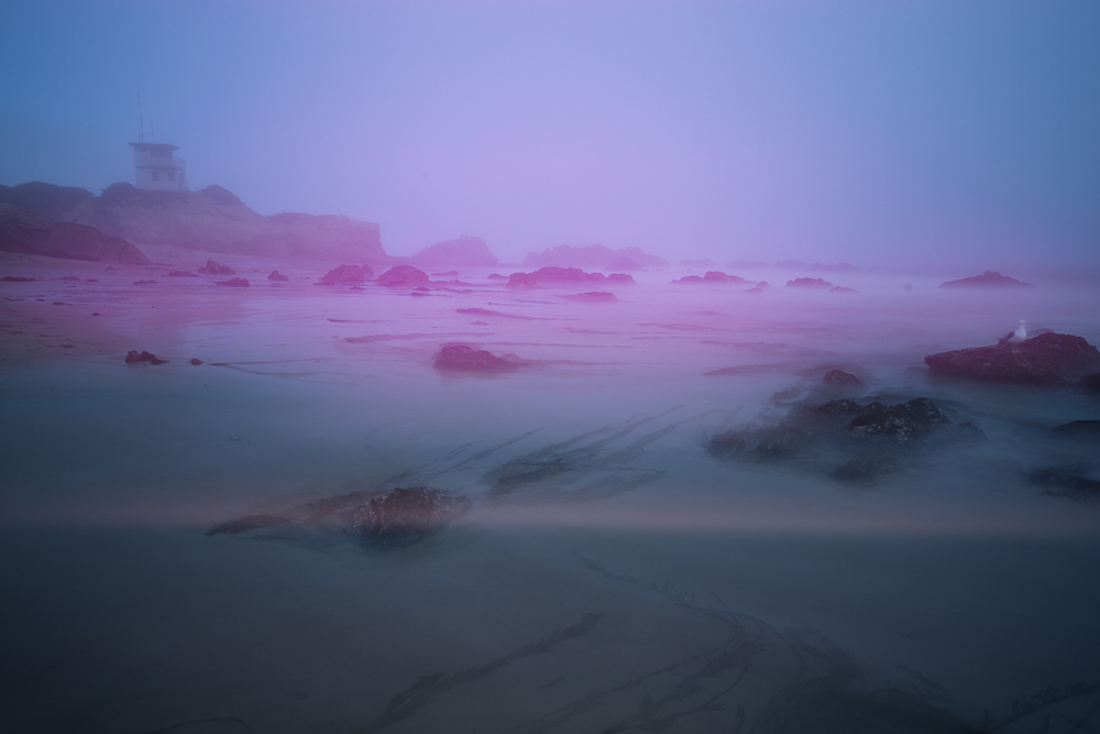 Magenta color blobs and light leaks