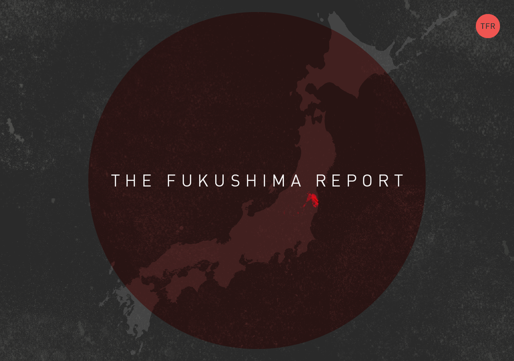 View  The Fukushima Report