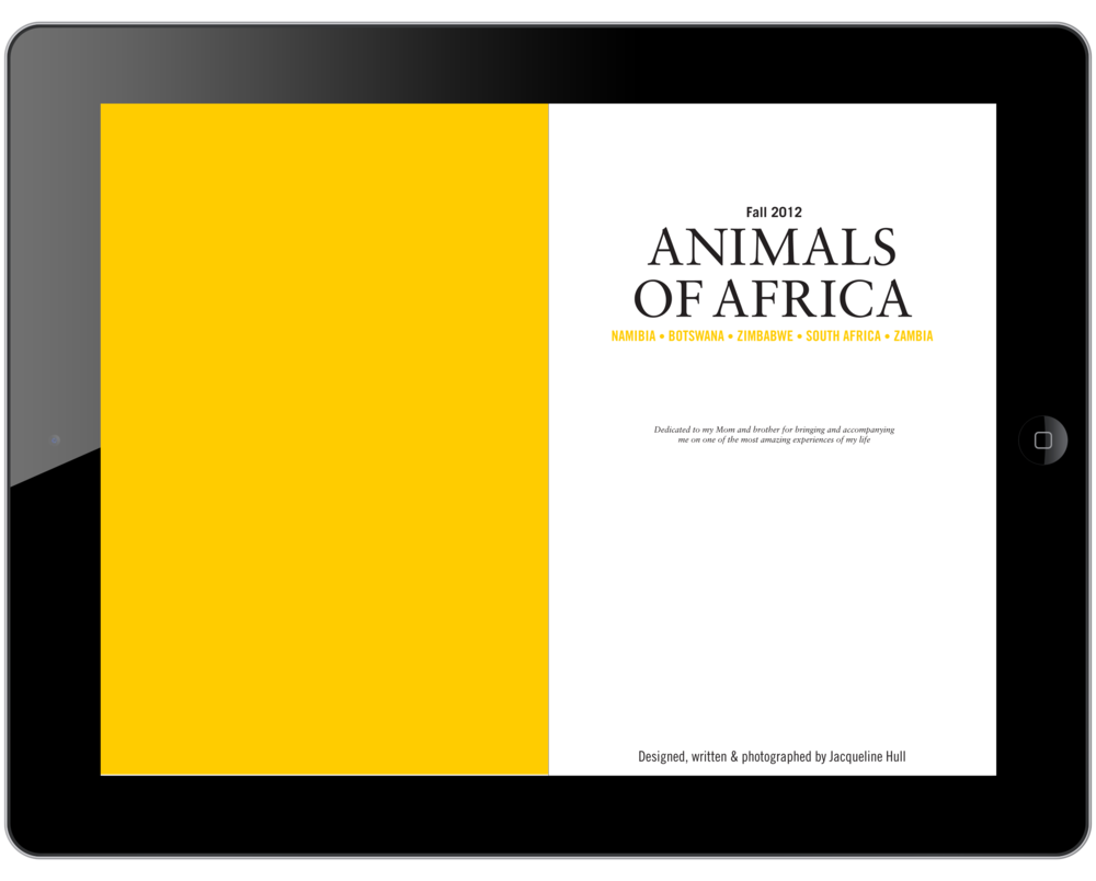 Africa_Ipad_00.png