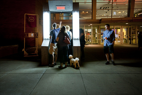 The enchanted door even denies real dogs. Photo byNorthern Spark