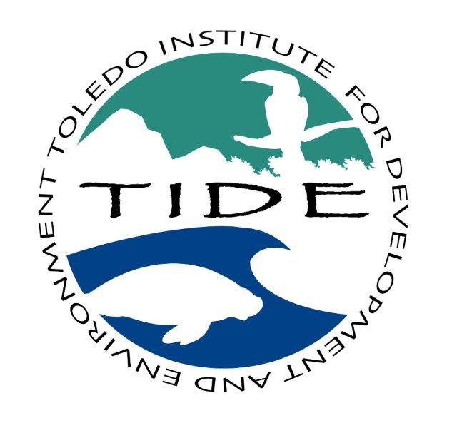 TIDE_Logo_large_transparent.jpg