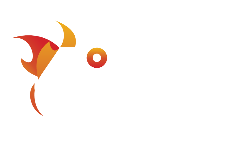 6 Degree Burn Fitness Studios