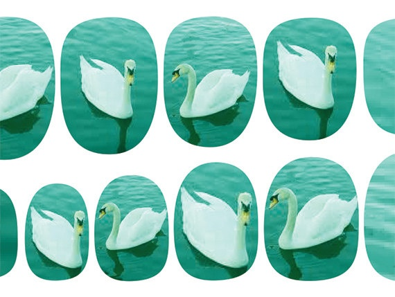 Swan decals for your nails.