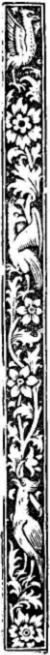 bord018-1.jpg