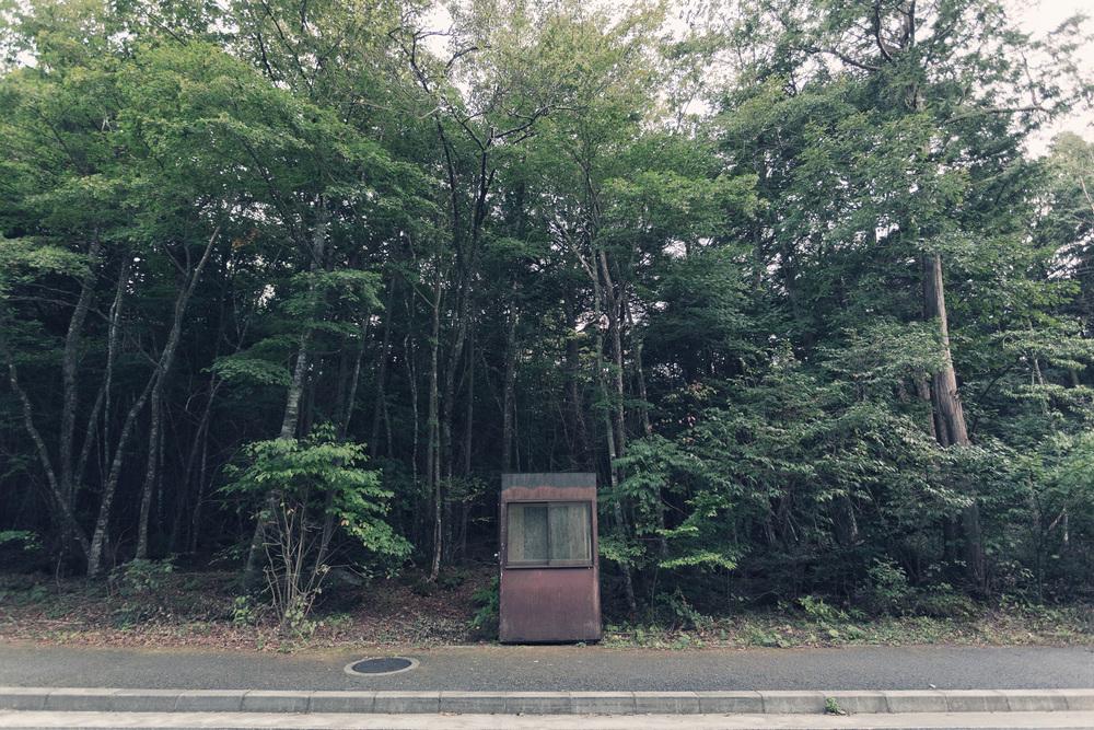 Fujiama_mg_8912.jpg