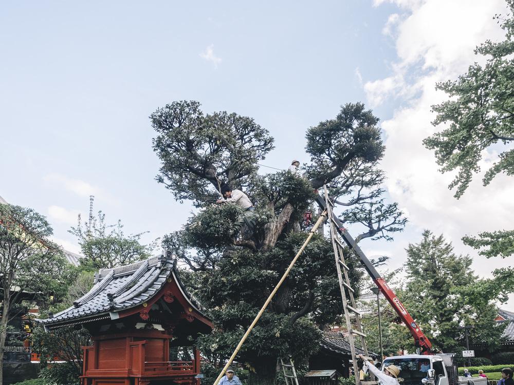 Japan2014_a160135.jpg