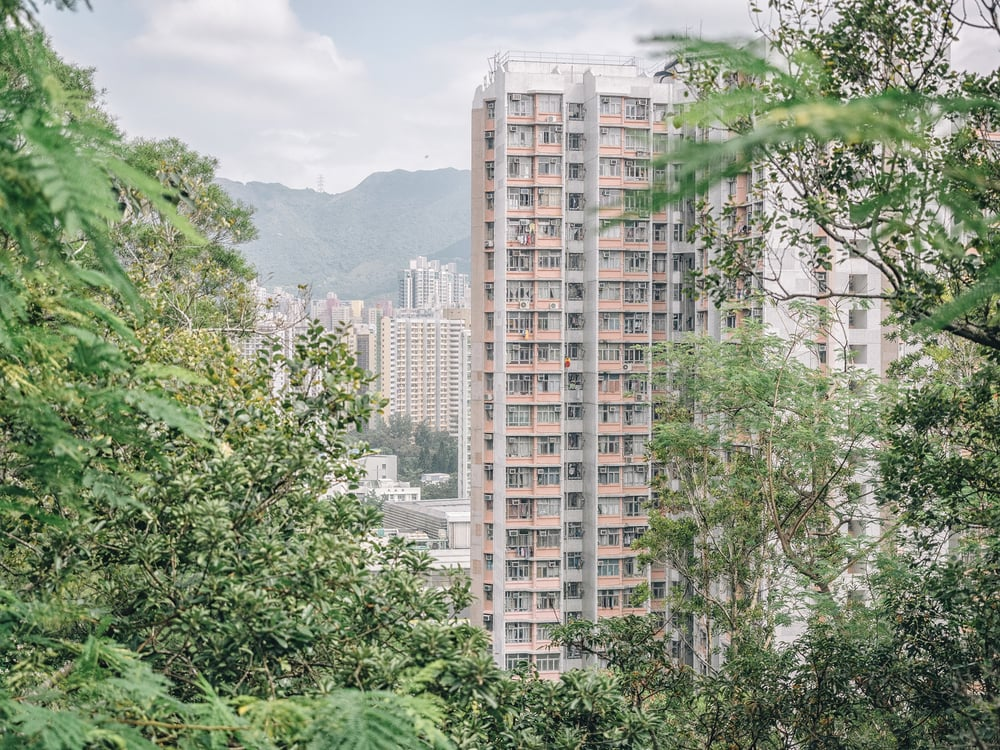 City_Day15.jpg