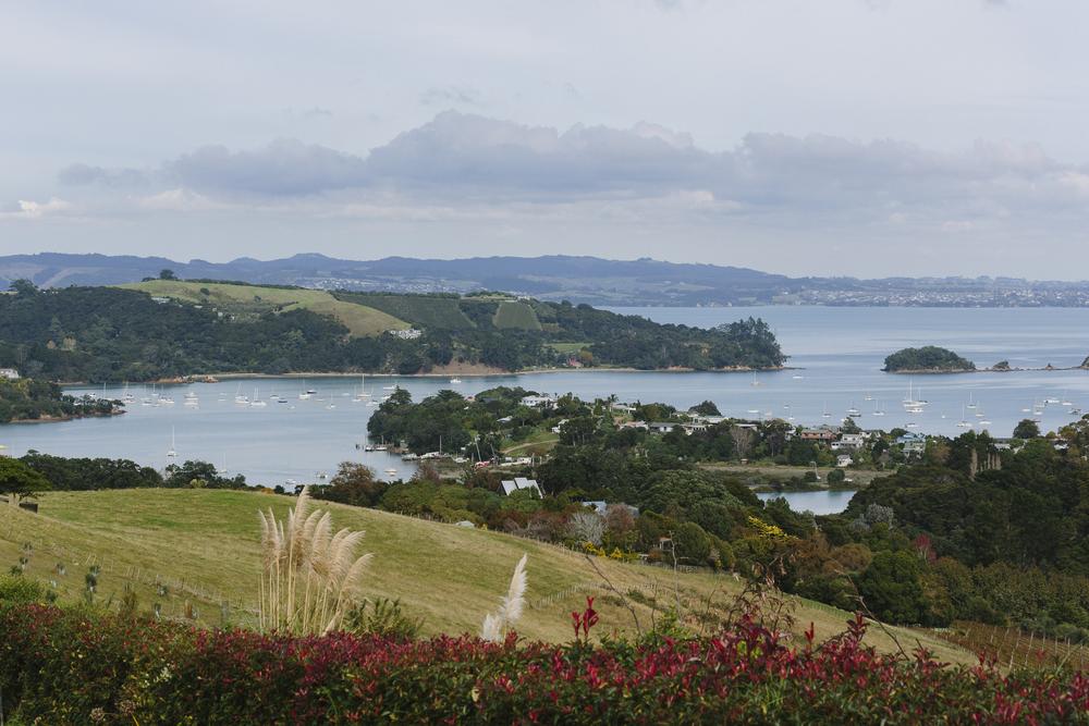 Auckland_Waiheke_009.jpg