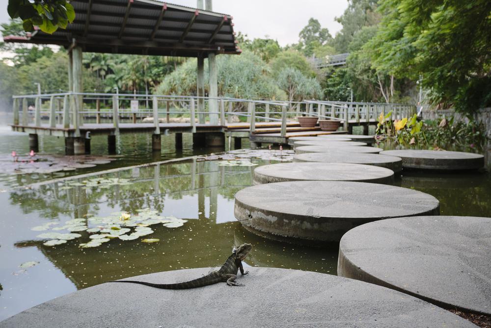 Brisbane_Roma Gardens004.jpg