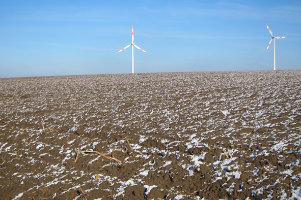 windmills in field.jpg