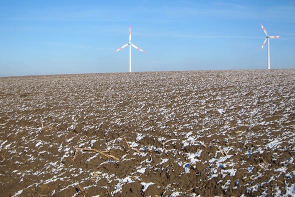 windmills in field.jpg