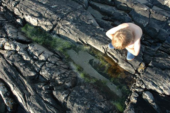 tide pools.jpg