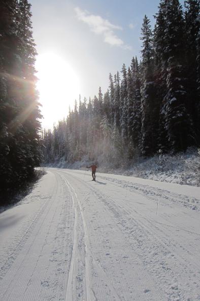 moraine lake road.jpg