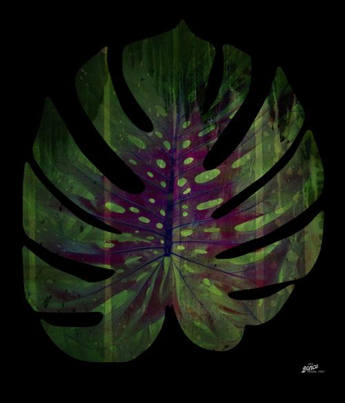 Bencu 'Enlightened Leaf' Digital print on canvas 60x60cm 2015.