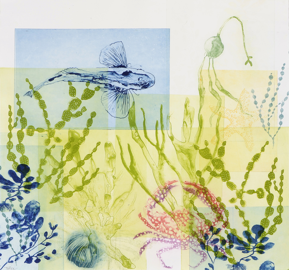 """Trudy Rice """"Drifting seaweeds with 