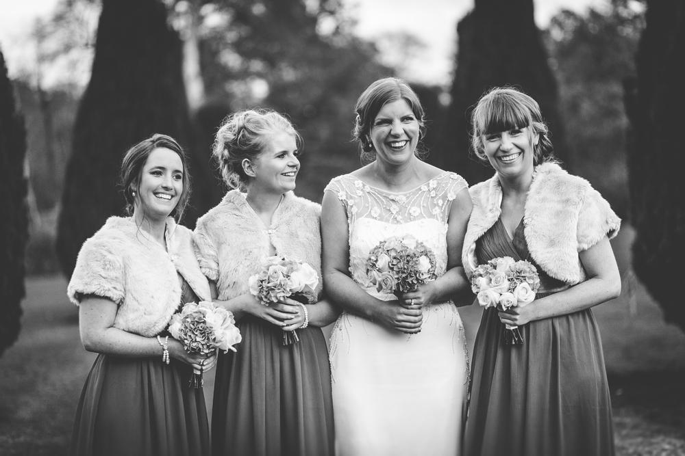The Heritage Killenard Wedding photographs031.jpg