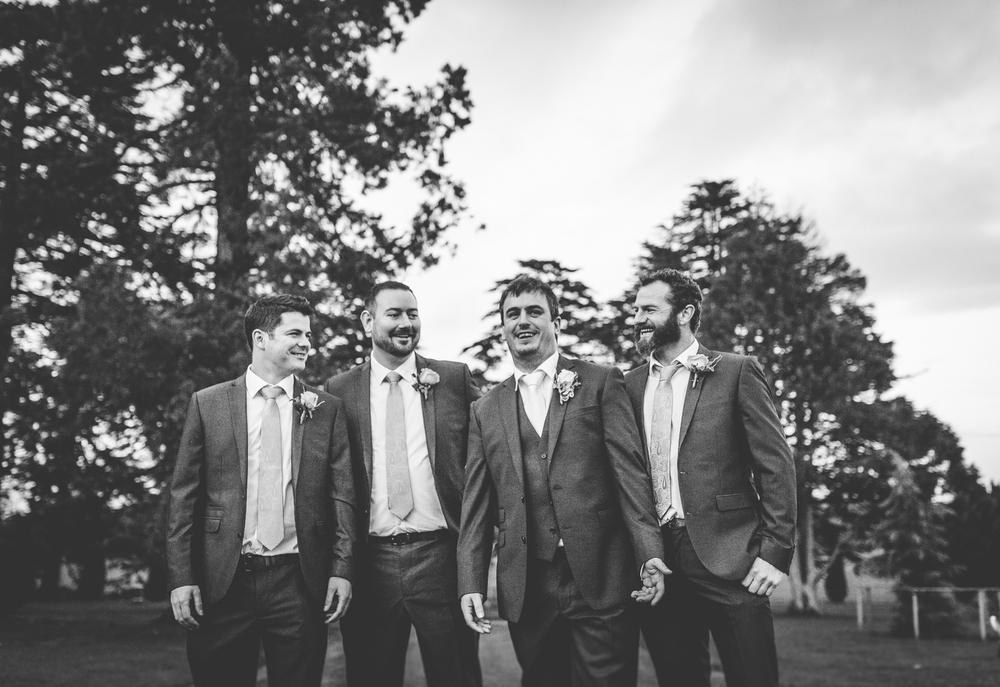 The Heritage Killenard Wedding photographs033.jpg